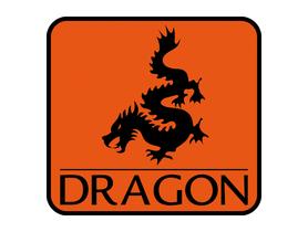 Dragon Poland Spółka z ograniczoną odpowiedzialnością Sp.k.